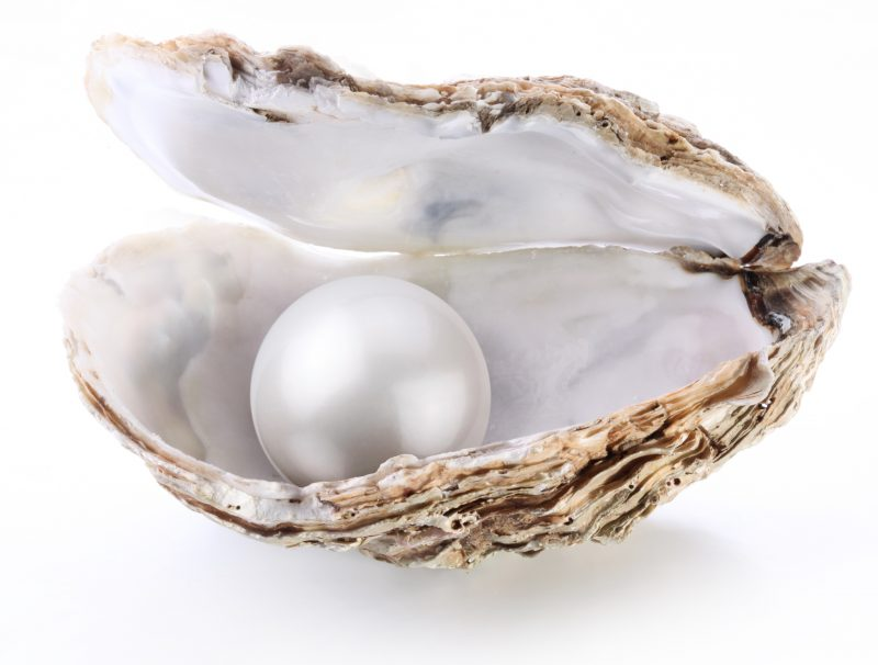 A large gleaming white sphere inside a rough-surfaced shell with smooth white interior.