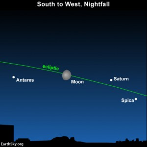 At nightfall on July 17, the star Antares sparkles to the east of the moon, whereas the planet Saturn and the star Spica shine to its west..