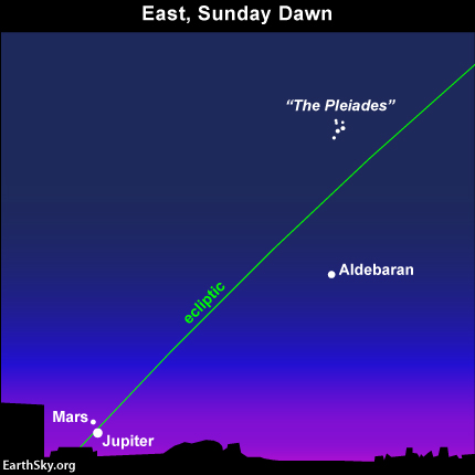 Watch for the great Mars and Jupiter pairing on the mornings of Sunday, July 21 and Monday, July 22..