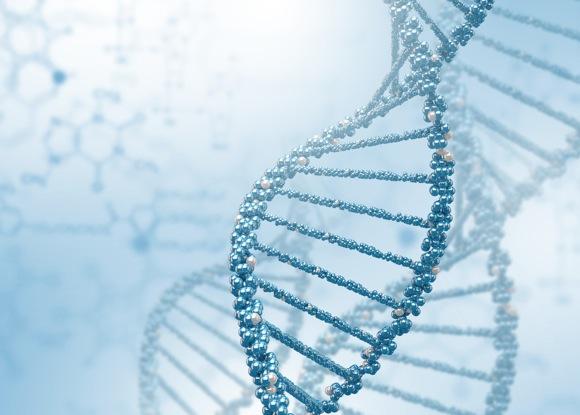 DNA-strand-color