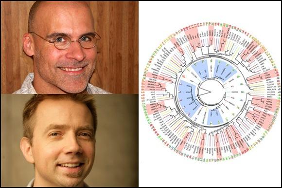 RNA-discovery