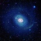 Starburst-ring