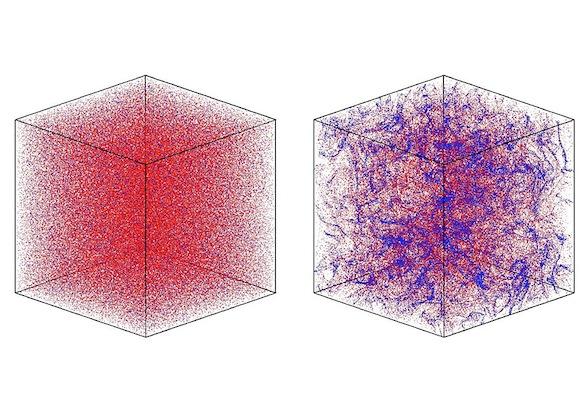 computer-simulation-nonmotile-cells