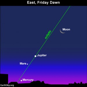 Use the moon and Jupiter to find the planets Mars and Mercury closer to the horizon. The moon and Jupiter rise in the predawn darkness, but Mercury won't rise till after dawn's first light.