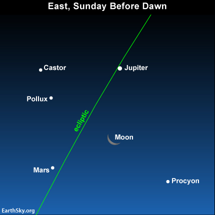 By the morning of September 1, the moon will be a noticeably thinner crescent, and it'll be between Jupiter and Mars.