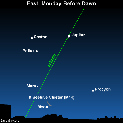 If you have a clear view to the east before dawn on Monday, September 2, you might be able to pick the planet Mars near the slim crescent moon.
