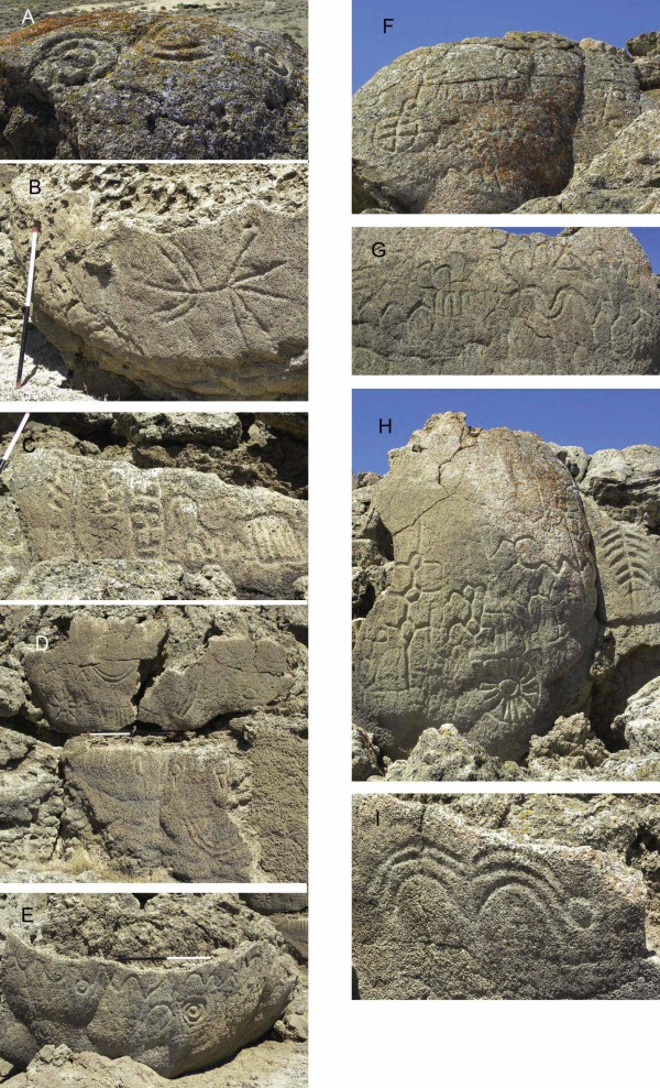 Details of different petroglyphs at Winnemucca Lake. Image credit: L. V. Benson, et al.