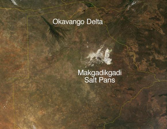 Satellite image of Botswana's Okavango Delta and Makgadikgadi Salt Pans. Image credit: Terra MODIS/ NASA