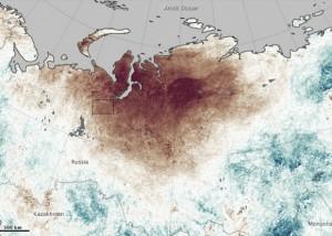 fires-in-Siberia