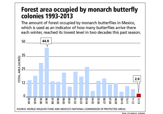 The number of acres that monarch butterfly colonies occupied this past winter in the Mexican forest was at a 20-year low. Photo and caption via The (Westchester County, N.Y.) Journal News via USAToday.