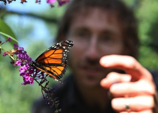Travis Brady is director of education and living collections at Greenburgh Nature Center in Greenville, NY.  Photo via Joe Larese, The (Westchester, N.Y.) Journal News via USAToday.