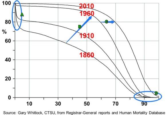mortality-curve