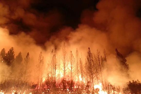 Rim Fire burning at night on August 21. Image via NASA.