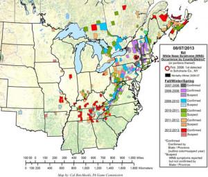 whitenosesyndrome-map-07aug13-580