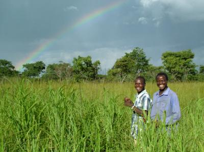 Nestfinders at the Zambian study site. Image Credit: Claire Spottiswoode.