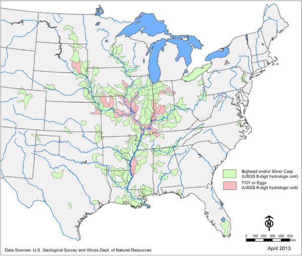 Distribution of Asian carp. Green regions show the presence of bighead and/or silver carp. Pink regions indicate locations where carp eggs and newly-hatched carp have been found. Image credit: USGS & Illinois Dept. of Natural Resources.