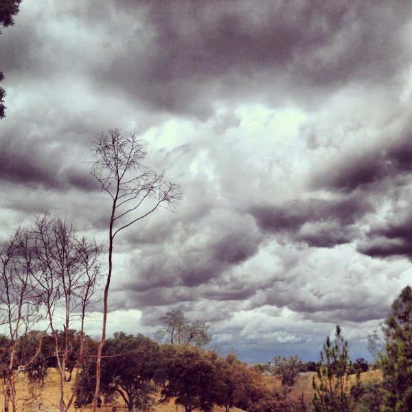 A cloudy day before autumn begins in Valley Springs, California, by EarthSky Facebook friend Bethany Fucci.