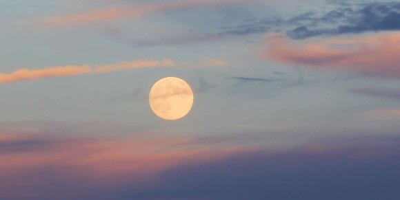 Amy Simpson-Wynne in Virginia posted this beautiful twilight photo of the September 18, 2013 Harvest Moon.  Thank you, Amy!  Watch for the Harvest Moon on September 19, too.  A Harvest Moon is characterized by rising near the time of sunset for several evenings in a row.