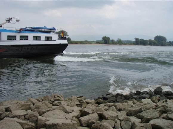 river-banks-fast-fish