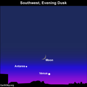 Moon, planet Venus and star Antares at dusk on October 8