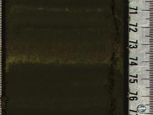 dolomite-within-siliceous-algae