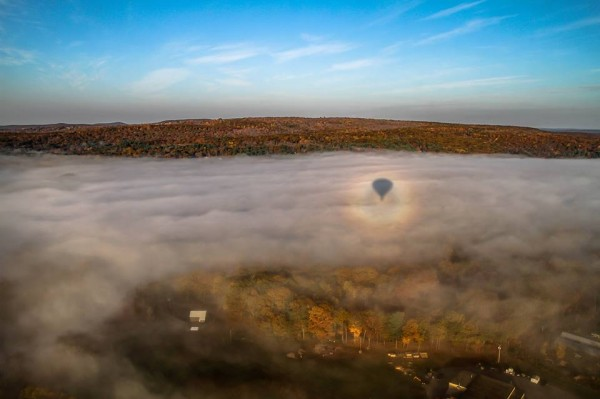 View larger. | View from a hot air balloon by Eileen Claffey in Brookline, Massachusetts.  The shadow of the balloon, with a halo of light around it, is called a