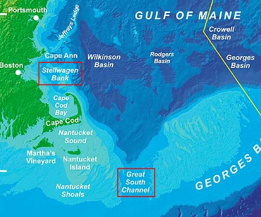 A map of the Stellwagen Bank National Marine Sanctuary and the Great South Channel. Image credit: Northeast Fisheries Science Center/NOAA.