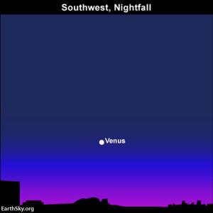 Venus at nightfall