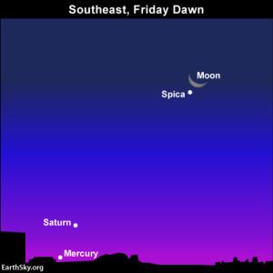 Moon, Spica before dawn: Mercury, Saturn at dawn November 29. Read more