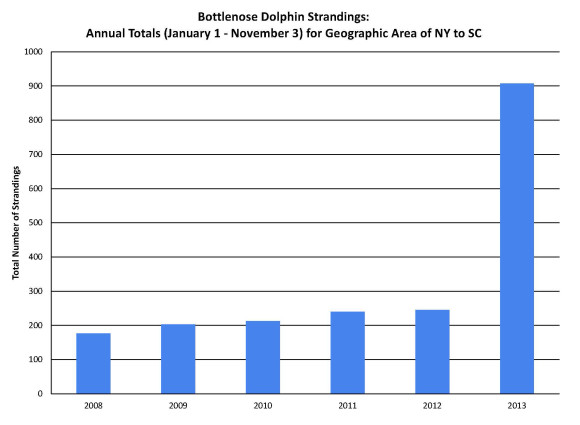 Graph via NOAA: 2013 Bottlenose Dolphin Unusual Mortality Event in the Mid-Atlantic