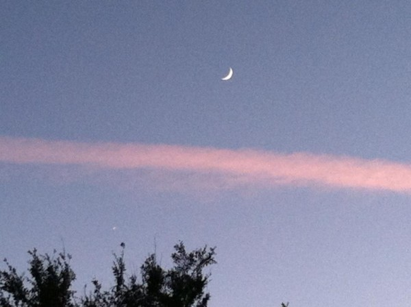 November 6 moon and Venus as seen in twilight. See Venus in the lower left of the photo? Photo by Kim Sturch Ferguson in Simi Valley, California. Thank you, Kim!