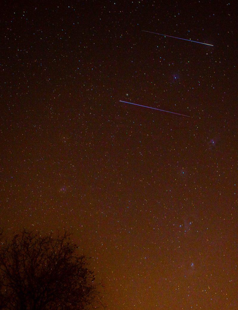 Leonid meteors via Henry Shaw/SummersMagic Photography.