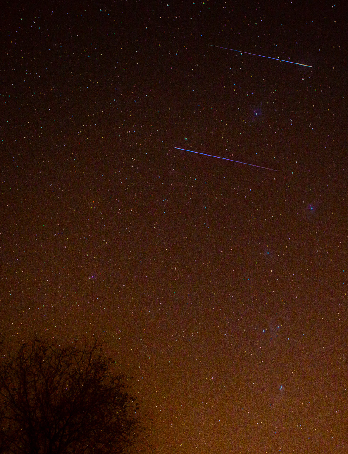 View larger. | Leonid meteors by Henry Shaw of SummersMagic Photography.