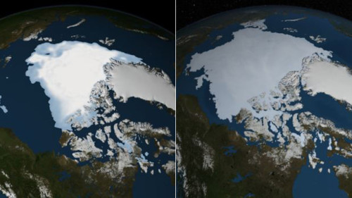 Arctic sea ice coverage. in August 2012 (left) in contrast to August 2013 (right). Image via NASA.
