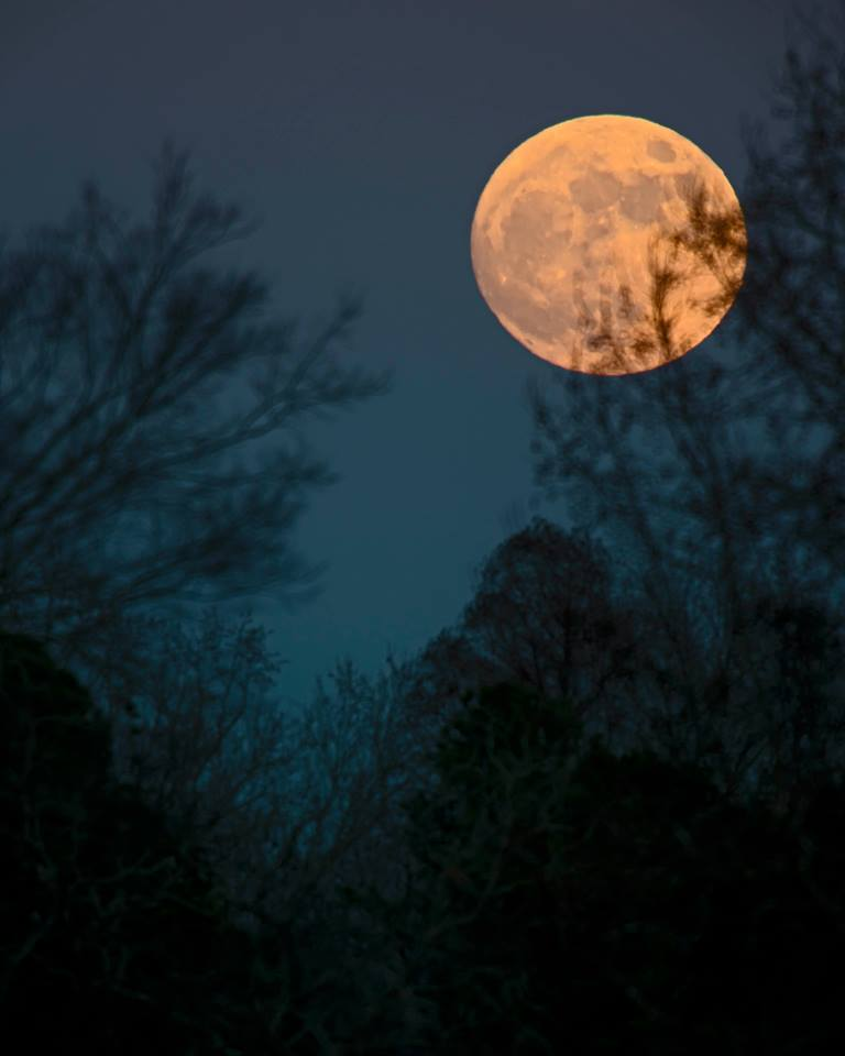 View larger. | Full moon of December 16, 2013 via EarthSky Facebook friend Ken Christison in North Carolina.
