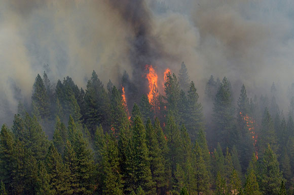The Rim Fire just west of Yosemite National Park on August 29, 2013. Image Credit: U.S. Army National Guard.