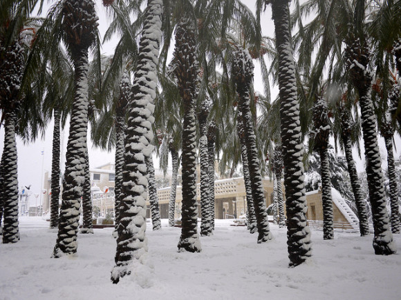 Snow on Jaffa Road, one of the longest and oldest major streets in Jerusalem.  Photo via Flickr user Miriam Mezzera.  Click here for more details on this photo.