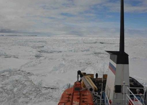 View from icebound Russian ship