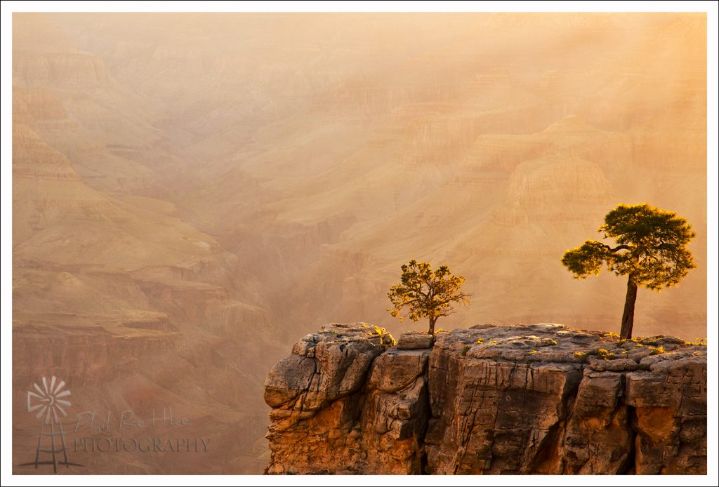 View larger. | Grand Canyon in the morning, by Phil Rettke Photography