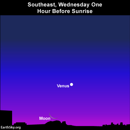 Moon, Venus again light up the morning dawn on Wednesday, January 29 Read more