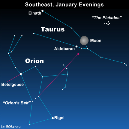 Although the moon lights up Taurus on January 11, 2014, you can always find this constellation of the Zodiac with Orion's Belt, once the moon moves out of the Bull.