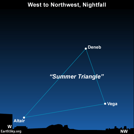 Vega is the brightest star in the Summer Trinagle. From mid-northern latitudes, the Summer Triangle sits close to the west-nothwest horizon as darkness fall in January.