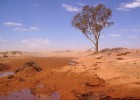 Australian drought, via GreenPacks