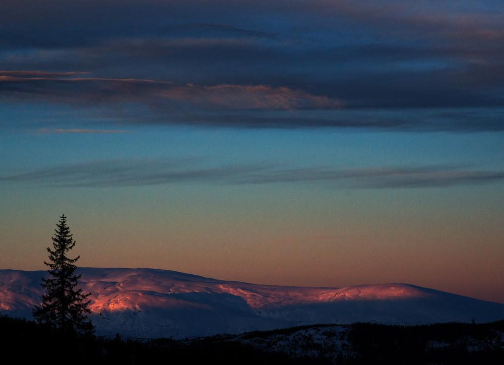 View larger. | Winter light image by Jan Inge Larsen in northern Norway.