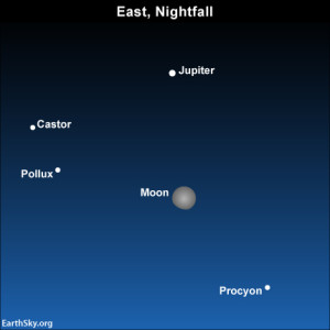 As dusk turns into darkness, look for the bright stars Castor, Pollux and Procyon in the vicinity of the moon and Jupiter.