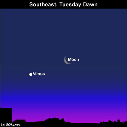 Moon, Venus close together in morning sky on February 25 Read more
