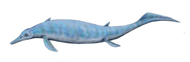 An artist's depiction of Chaohusaurus. Image credit: Nobu Tamura via Wikimedia Commons.