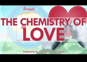 chemistry-of-love