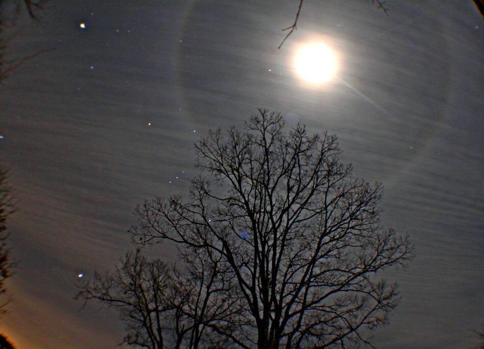 View larger. | EarthSky Facebook friend Stacy Oliver Bryant captured this image of bright planet Jupiter (upper left) and the moon, surrounded by a lunar halo, last night - February 7, 2014.   Inside the halo, you can see the bright star Aldebaran near the moon.  Jupiter and Aldebaran are near the moon on February 8, too.