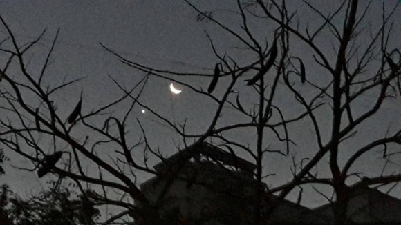 Our friend Lakshmi Ravishankar in Pune, India captured the moon and Venus on February 26.  At this point, the occultation of Venus - when the moon would blot Venus from view - was just a few hours away.  Thank you, Lakshmi.
